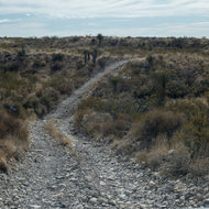 Williams Ranch road home.