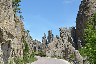 Thumbnail image ofLooking down the Needles Highway.