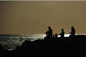 Thumbnail image ofMorning fishers.