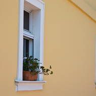 Windows with flowers.