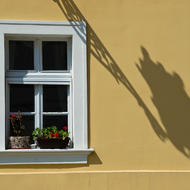 Window and lamp shadow.