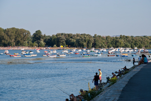 Thumbnail image of Fishers on the banks of the Danube.