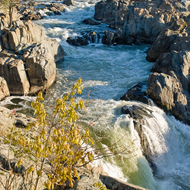 Great Falls, in Great Falls National Park.