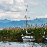Moored sailboats in Lake Ohrid at Struga.