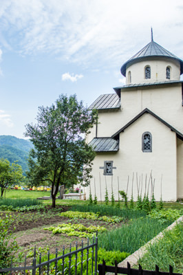Thumbnail image of Church and garden at the Moraca Monastery.