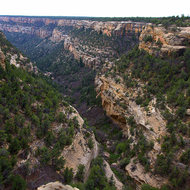 Looking down Cliff Canyon.