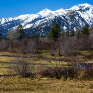 Likely territory for spotting a moose at the foot of the Grand Teton Range.