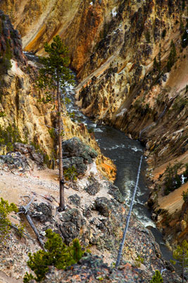 Thumbnail image ofYellowstone River in the Grand Canyon of the Yellowstone.