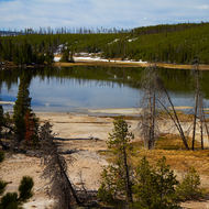 One of the many small thermal lakes along the Norris to Mammoth Hot Springs.