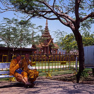 Young monks relaxing in the grounds of the Grand Palace.