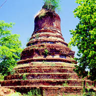 Ancient stupa is taken over by the native vegetation.
