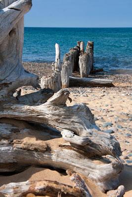 Thumbnail image ofLake Superior shoreline.