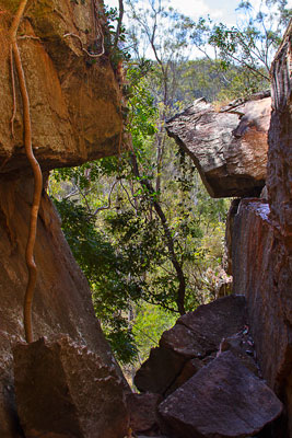 Thumbnail image ofKing Orchid Crevice on the western side of Cania...