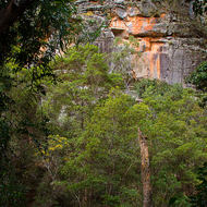 Sandstone walls of Russell Gully.