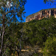 Bluffs of Mount Dowgo, part of the eastern side of Cania Gorge.