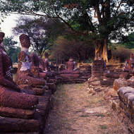 Array of sitting Buddha images.
