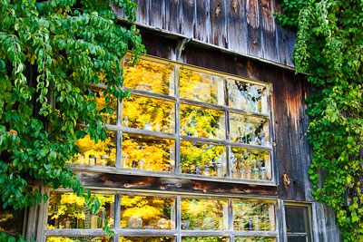 Thumbnail image ofReflections of fall color in the barn window.