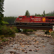 Canadian Pacific 8626 hauls freight eastwards near Lake Louise railway station.