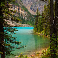 Glimpse of Moraine Lake through the trees.