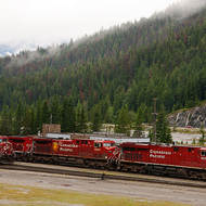 Canadian Pacific locomotives lined up in the Field depot.