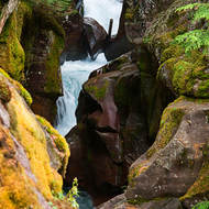 Falls on Avalanche Creek.