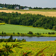 Serene Prince Edward Island where nothing moves very quickly.