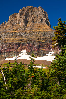Thumbnail image of Spectacular scenery from logan Pass.