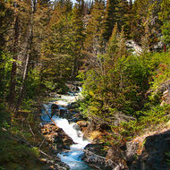 Small roadside waterfall near Sunrift Gorge on Going-to-the-Sun Road.