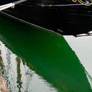 Black and green Bluenose.