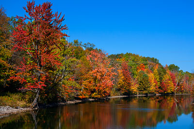 Thumbnail image ofFall colors on the Trent-Severn Waterway.