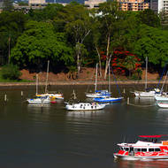 City Hopper commuter transport and moored boats on the Brisbane River against the City Botanical Gardens.