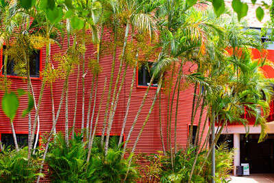 Thumbnail image ofCurves and color at the Queensland Conservatorium.