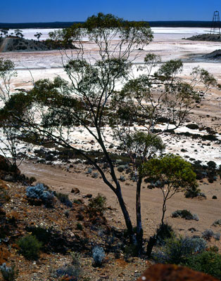 Thumbnail image ofSalt lake and mine frame head in the goldfields.