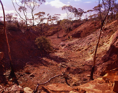 Thumbnail image ofRed dirt and dry creek bed.