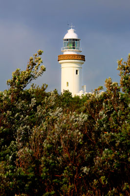 Thumbnail image ofCape Byron lighthouse glows in the early morning...