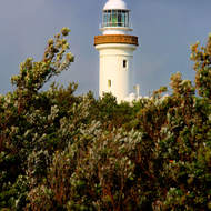 Cape Byron lighthouse glows in the early morning light.