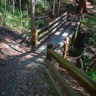Wooden bridge on a walking track through the forest.