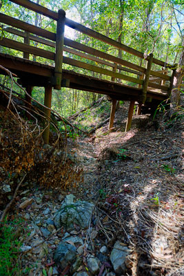 Thumbnail image of Dry creek bed under a wooden bridge.