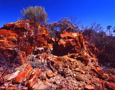Thumbnail image ofHarsh red dirt landscape of the Australian goldfields.