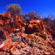 Harsh red dirt landscape of the Australian goldfields.