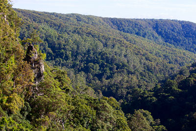 Thumbnail image ofLooking from Purling Brook falls, down the valley...