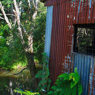 Old pump house on the bank of the Little Nerang Creek upstream of the Purling Brook falls.