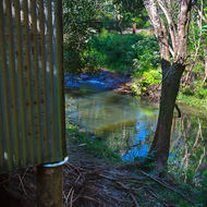 The Little Nerang Creek trickles past an old pump house upstream of the Purling Brook falls.