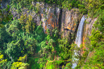 Thumbnail image of Purling Brook falls, a single plunge of over 100...