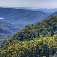 Queensland's Gold Coast visible from Springbrook National Park.