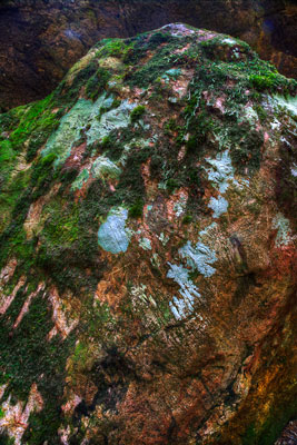 Thumbnail image ofWeathered and moss covered fallen rocks along...