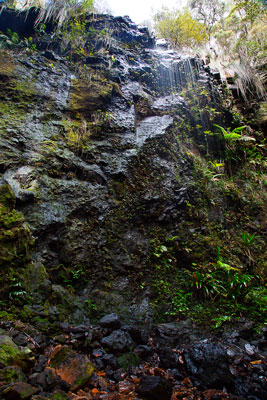Thumbnail image ofSmall waterfall fed from the dry forest above...