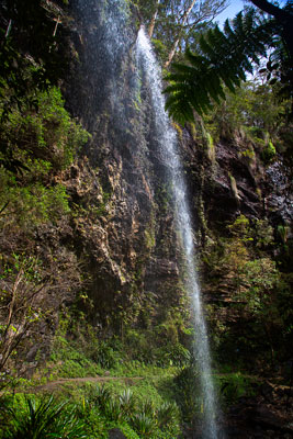 Thumbnail image ofPart of the Twin Falls cascades over a walking...