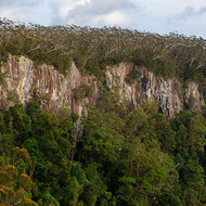 Steep cliffs of the escarpment over the Springbrook canyon.