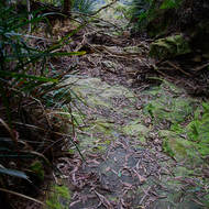 Bed of a dry creek leads towards the edge of the escarpment.